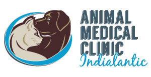 Animal Medical Clinic Indialantic