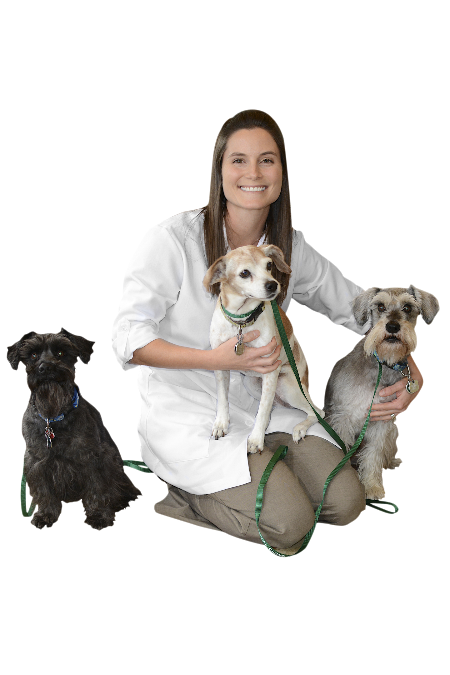 Marcia Craig, Animal Medical Clinic Veterinarian Indialantic, Melbourne, Florida