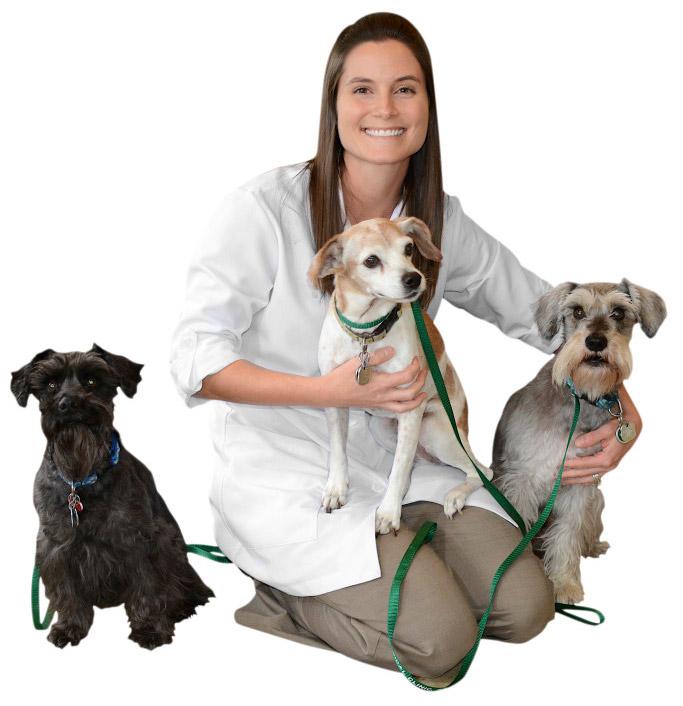 Animal Medical Clinic in Palm Bay. Photo by Chris Kridler, ChrisKridler.com